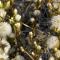 19 Local Flora (Plants)
