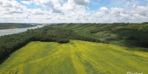 09 Riverlot Farms